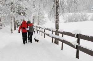 Winter-Spaziergänge in Kitzbühel  © by Fotowerk Nusser Aichner